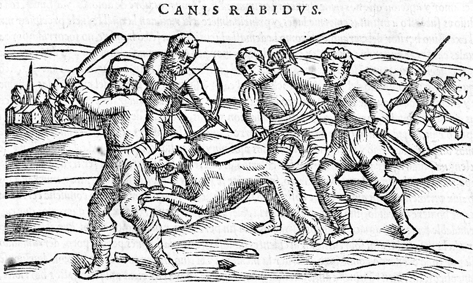 L0009996 Rabies: Slaying a mad dog
